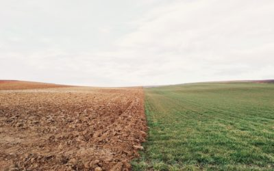 Hear and Not Fear:  What Kind of Ground Are You?